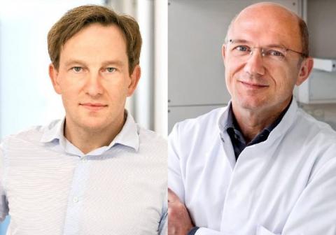 German Cancer Award for Roland Rad and Dieter Saur